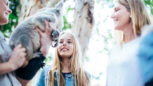 koala-with-handler-and-children-at-dreamworld-corroboree-(1)