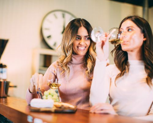 mount-tamborine-two-women-wine-tasting-at-witches-falls-winery
